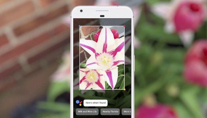 Blick in die Zukunft: Bildersuchfunktion Google Lens entschlüsselt in Echtzeit, was du siehst   OnlineMarketing.de